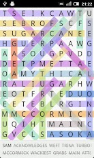 word-search3